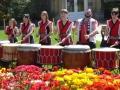 2006: Tulip Festival,<br/> RTBG